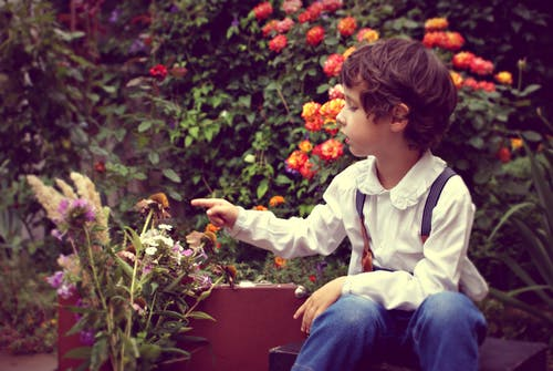 Getting Children Involved in Container Gardening