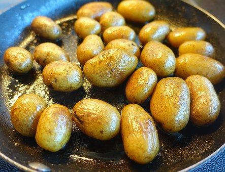 Potato Grow Pots- Growing Potatoes in Pots Easily