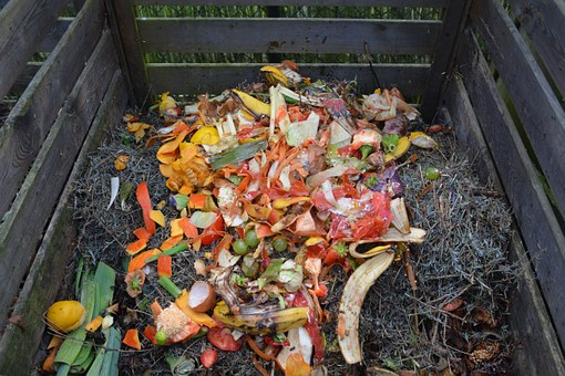 Waste in a compost bin