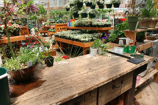 Garden centres are great places to visit