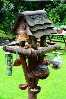 Getting the bird feeder right is important