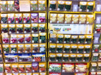 Seed Packets bring delight to gardeners