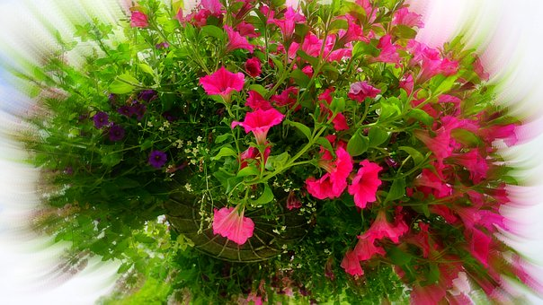 Hanging Baskets will need to be supported.