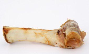 Bones are another good fertilizer
