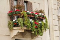 Balcony are ideal spaces for containers