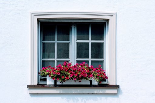 Window boxes brightens any window