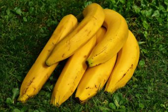 Bananas contain potassium.,so why would you use it in the garden?