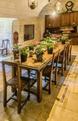 Plants in dining room