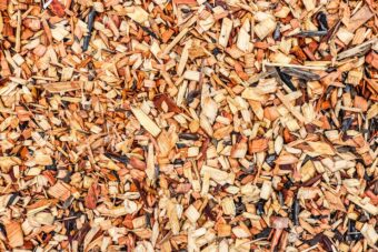 Wood chip makes excellent bedding for the worms