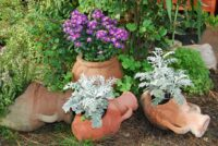 Amphorae make attractive pots in the garden