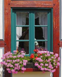 A complete wooden window box will add to your view and pleasure